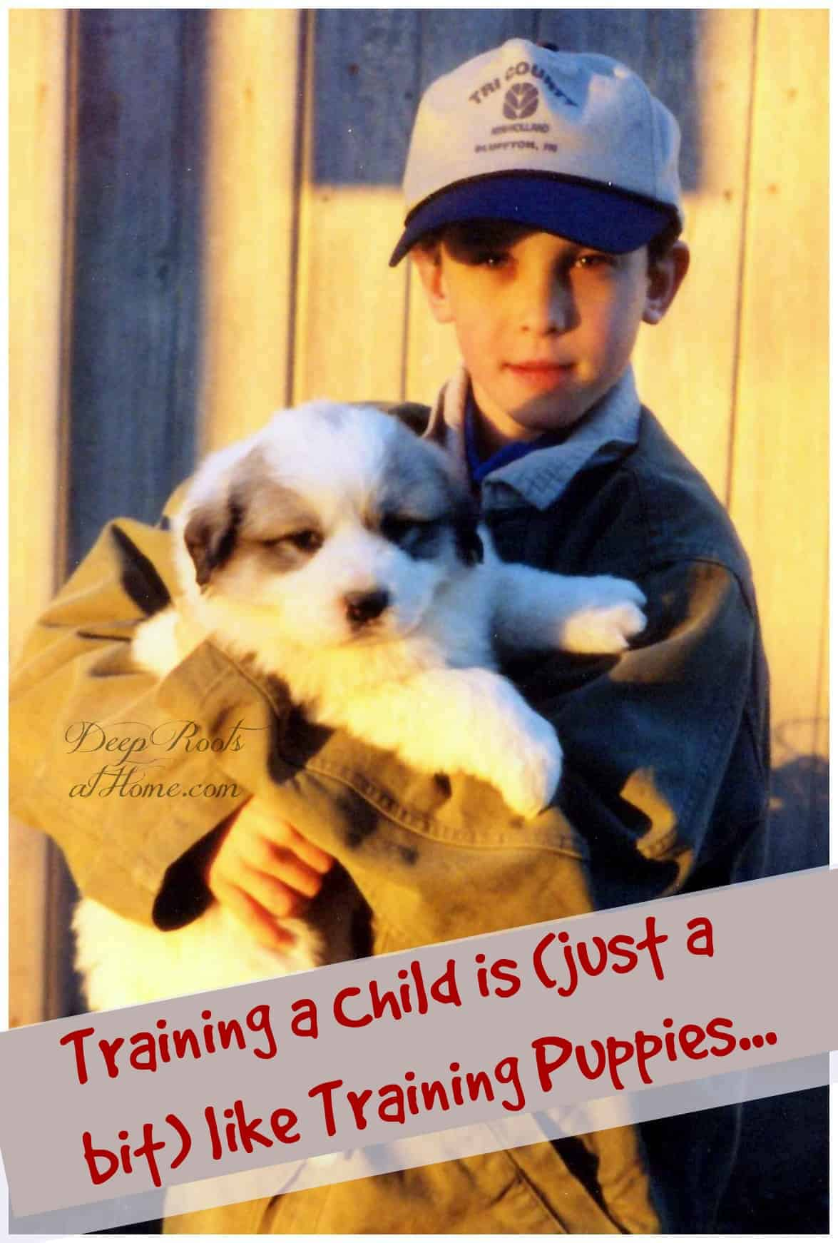 Training a Child is (just a bit) like Training Puppies. Photo of a responsible 8 year old boy holding a little puppy.