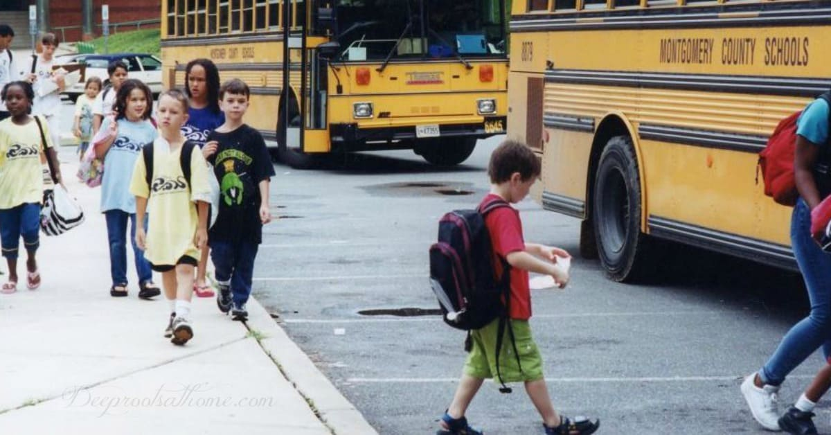 Fed-Up Parents & The Quiet Exodus From Public Schooling. School buses lined up waiting to pick up kids after school.