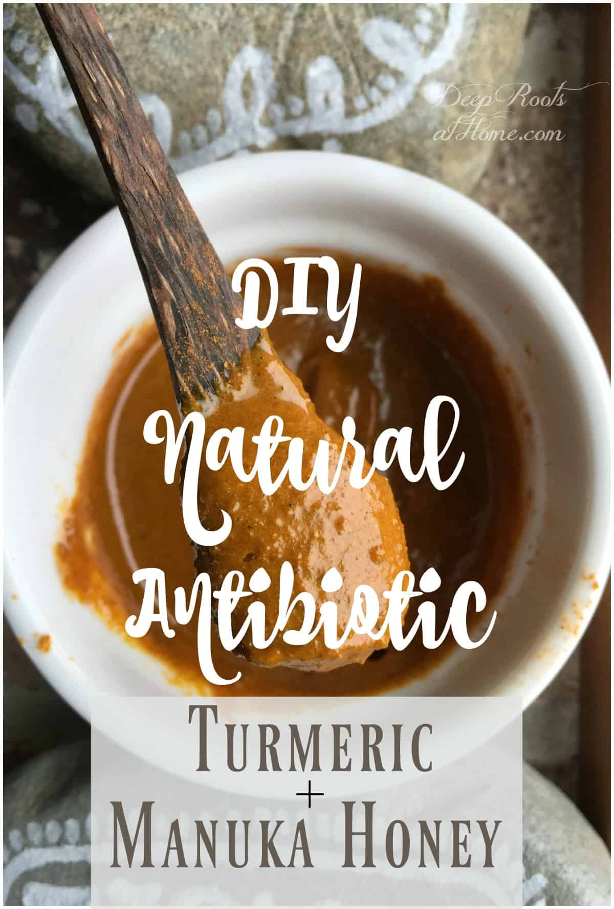 DIY Natural Antibiotic Recipe using Turmeric and Manuka Honey. A mixture of turmeric and manuka honey on a wooden spoon.