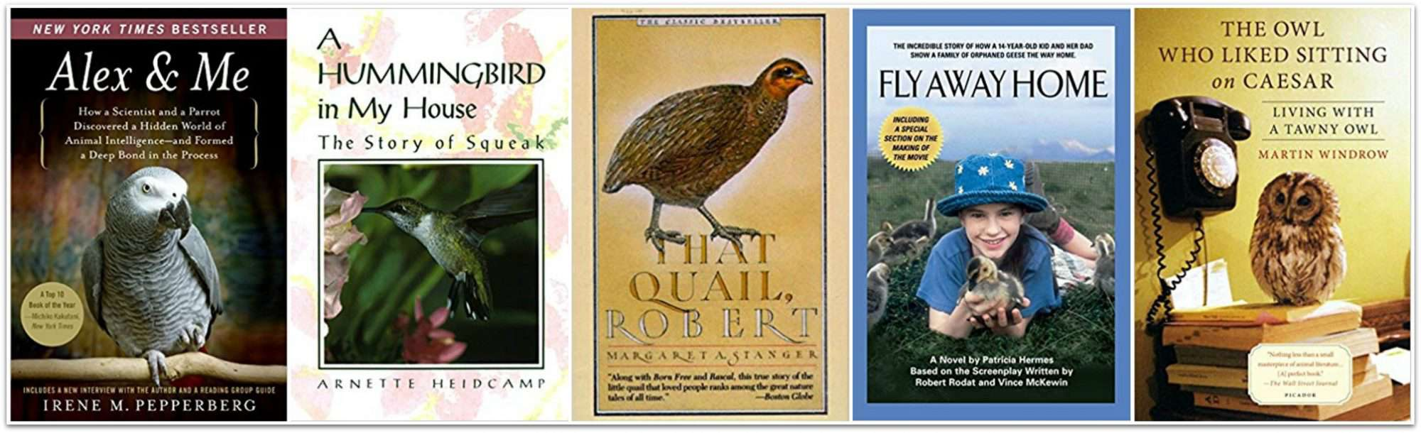 57 K - Gr. 5 True Story Nature & Science Books For Curious Kids. 5 books about animals that lived closely with humans on the reading list.