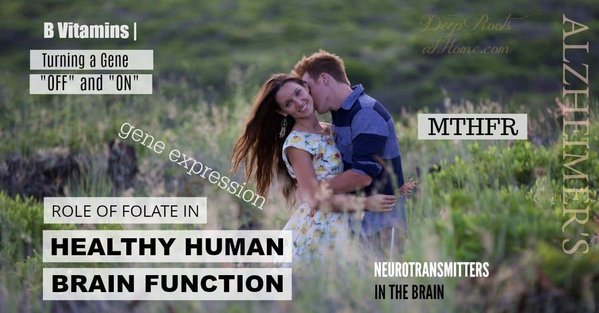 Studies Show B Vitamins (Including Folate) Support Healthy Genetics. The author and her husband