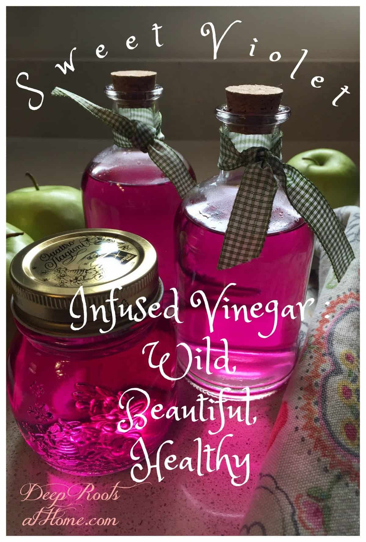 Sweet Violet Infused Vinegar: Wild, Beautiful, Healthy. Bottled floral vinegar