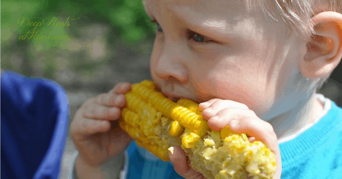 16 Health Problems Linked to Round Up (It's Everywhere) . Eating corn