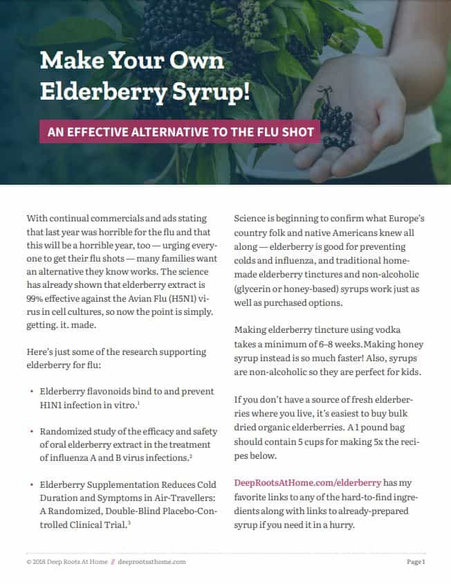 Elderberry Syrup Recipes