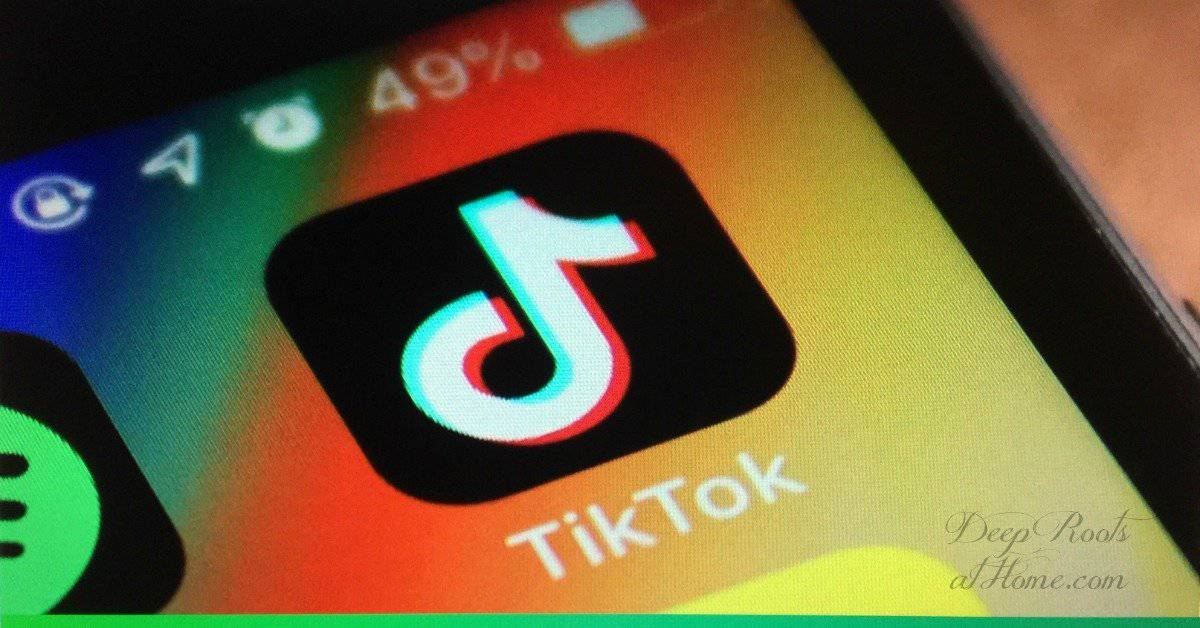 TikTok App Targets Kids: Please Remove This High Security Risk Now.