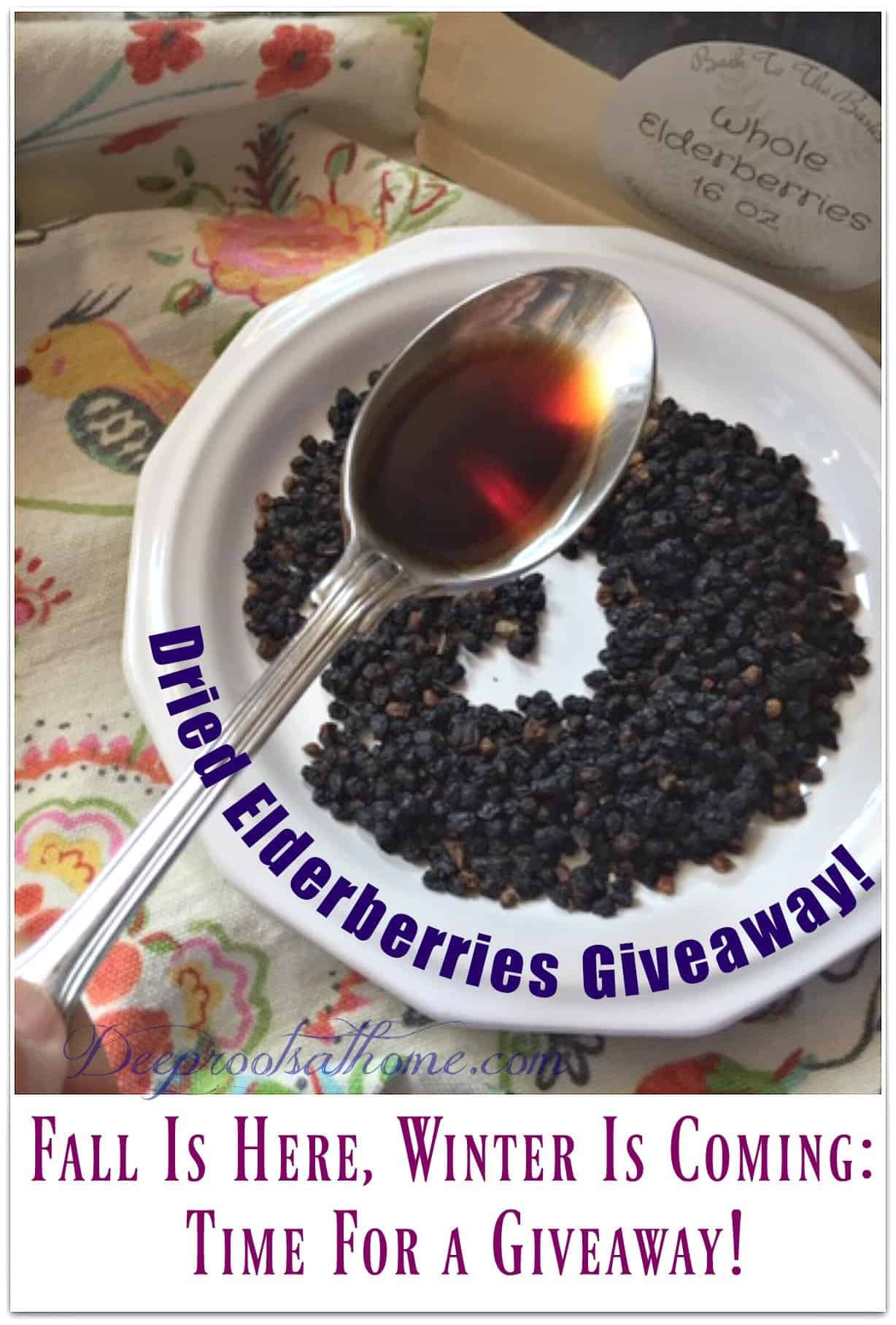 Fall Is Here, Winter Is Coming: Time For a Dried Elderberries Giveaway. spoon