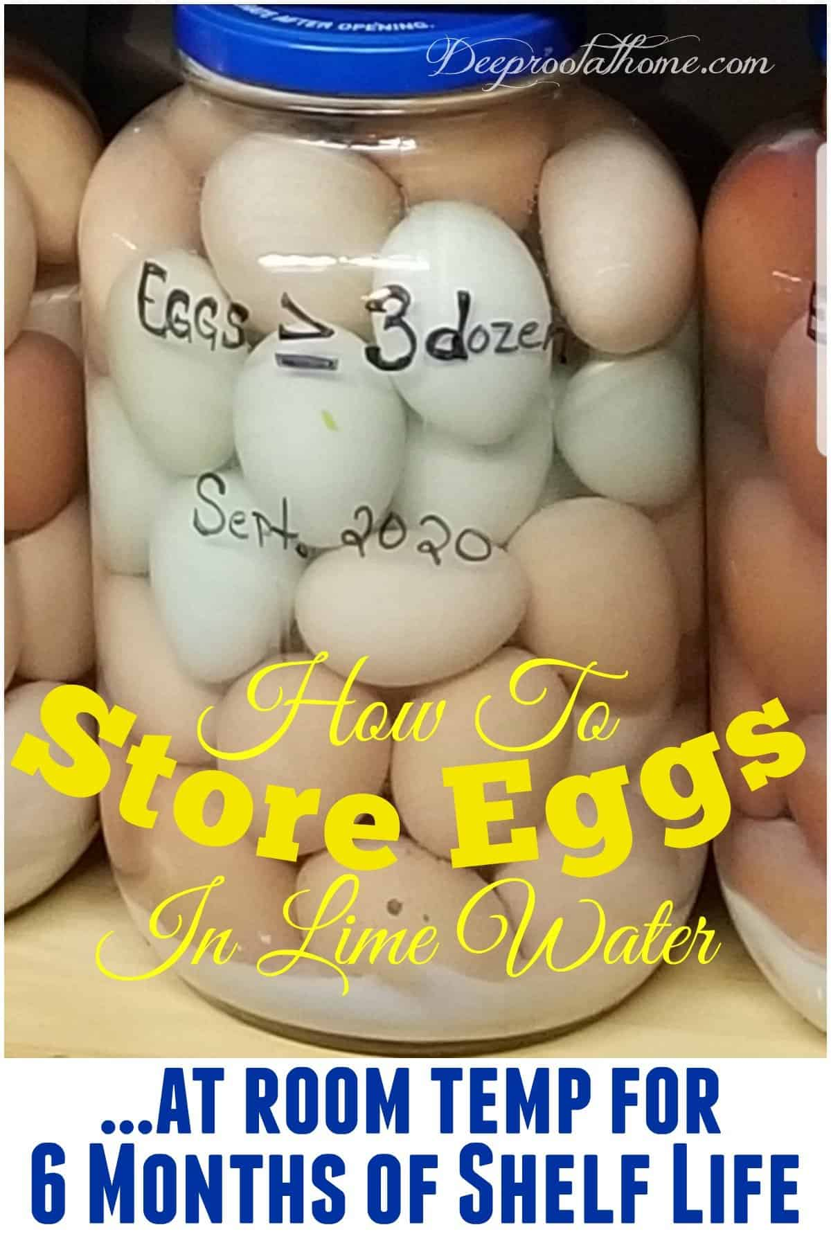 How to Store Eggs at Room Temp for 6 Months Shelf Life in Lime Water. eggs in a jar